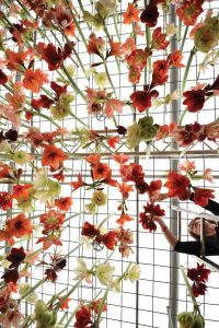 ay110250856a-gardener-hangs2